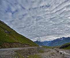 Package Tour To Shimla Manali